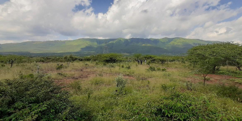 OVERVIEW OF NGONG – NAIROBI
